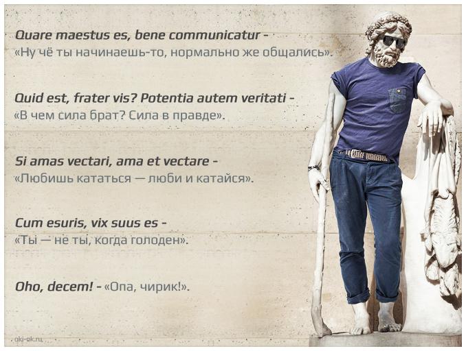 фразы на латыни с переводом о жизни зависимости тканей